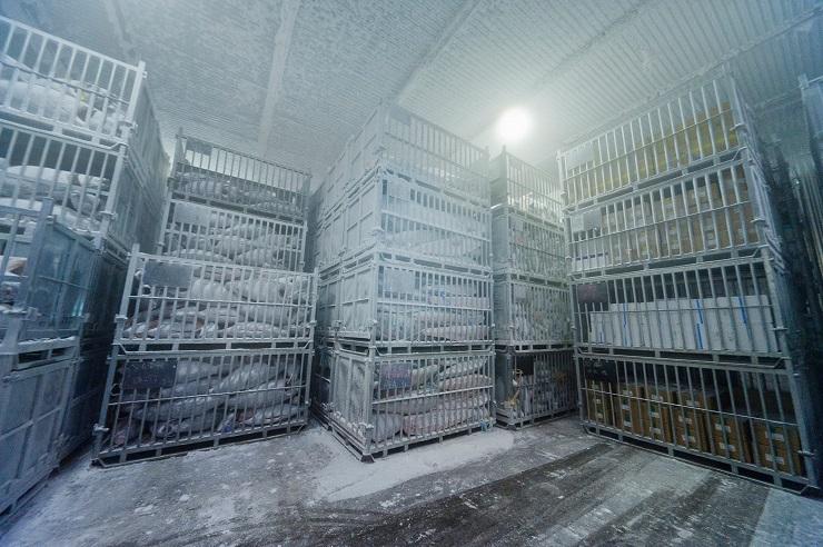 Contrôle-température-chambres-froides-VESTA